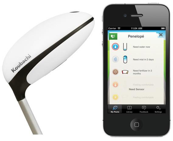koubachi wifi pflanzen sensor erinnert uns wann die pfanzen wasser ben tigen. Black Bedroom Furniture Sets. Home Design Ideas